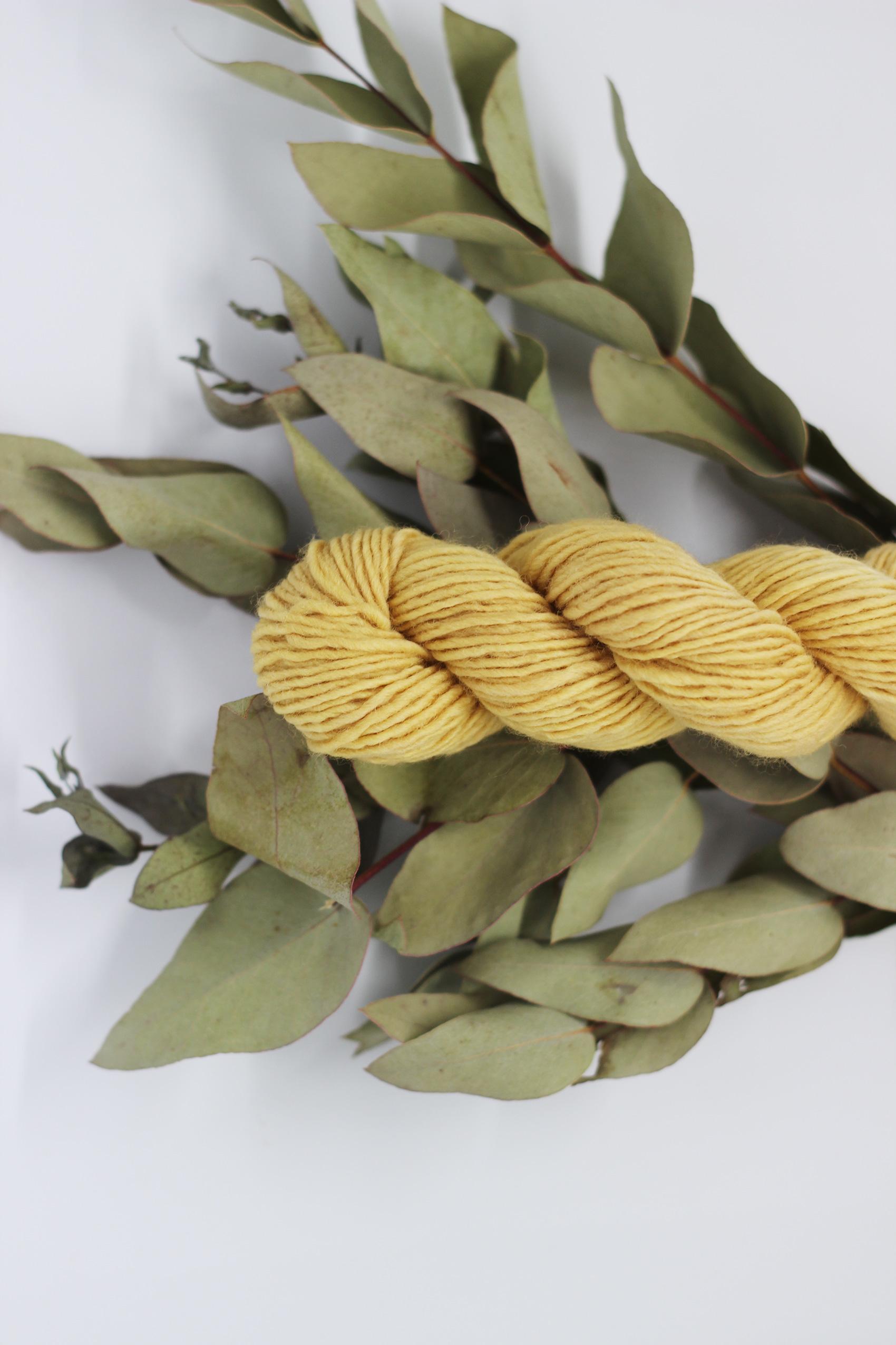 Cómo teñir lana con hojas de eucalipto